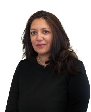 Nina Modessa Personal Injjury Legal Executive OH Parsons LLP